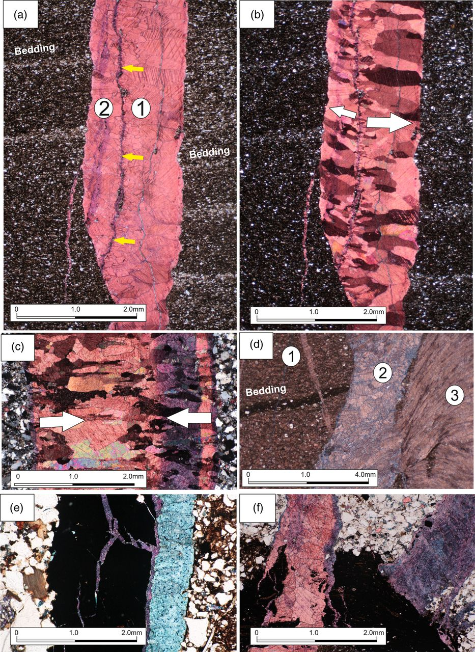 Shale gas resources of the Bowland Basin, NW England: a